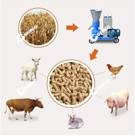 牛羊饲料颗粒机  小型饲料颗粒机  吉姆克饲料颗粒机厂家直销